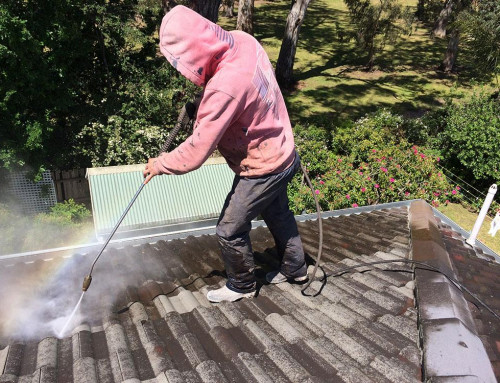 How to Clean a Colorbond Roof in Perth