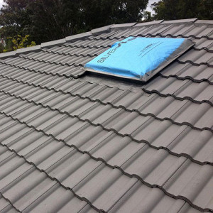 grey painted roof