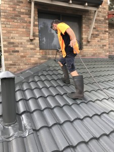 painting a roof