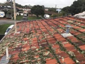 dirty roof Ardross WA